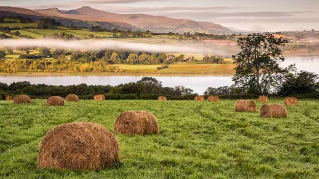 Sales of farmland in Wales hit a low