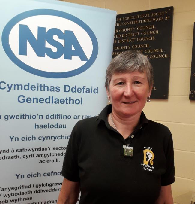 NSA Wales chair Kate Hovers