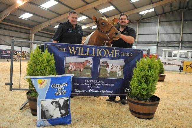 Philip and Stuart, pictured at the Welsh Dairy Show, have lost 52 per cent of their milk income Picture: Debbie James