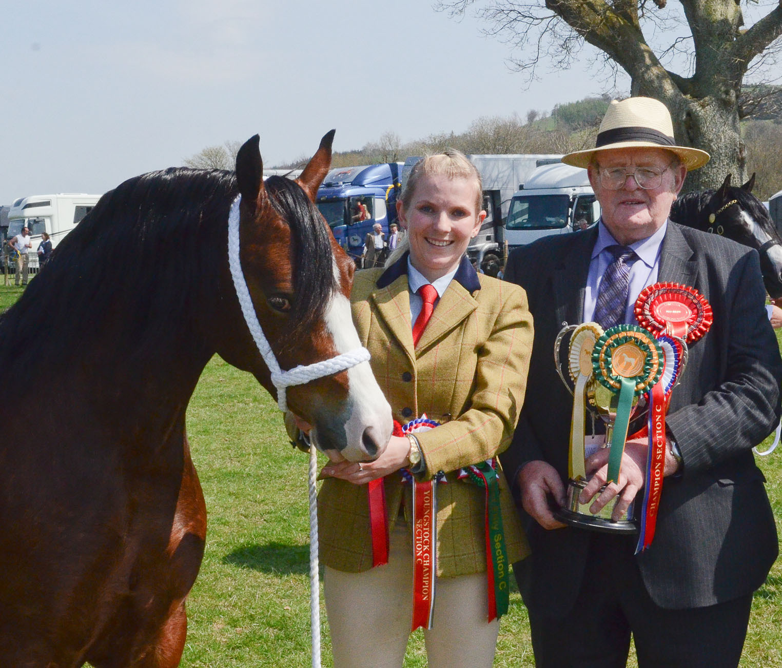 Winner of the Welsh Pony (Cob type) Section C Stallion Standing in Wales was TYNGWNDWN LION KING from Tyngwndwn Stud, Llanon and the Show President John Green presents her with the trophy .