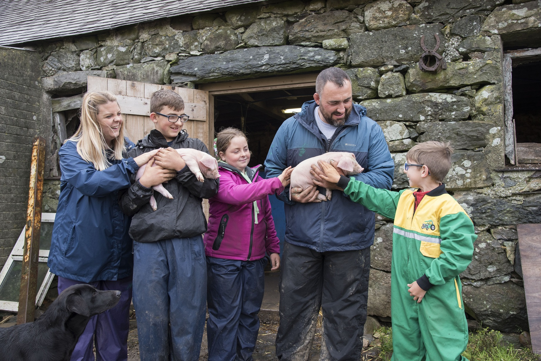 Watch the Morgan family from Sageston get to grips with rural life in The Family Farm on Sunday.